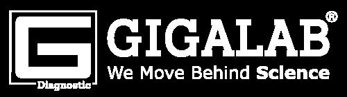 Gigalab Manufacturing